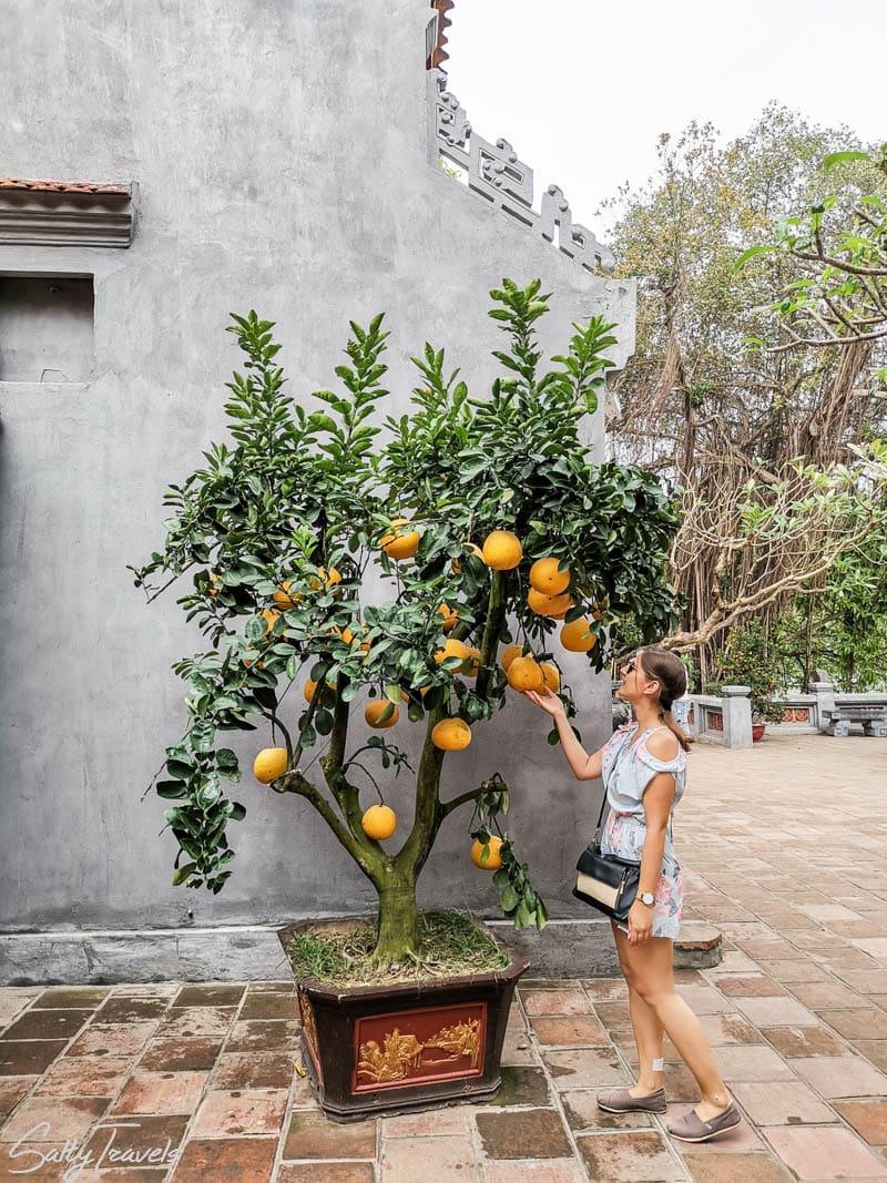 Co zobaczyć w Hanoi?