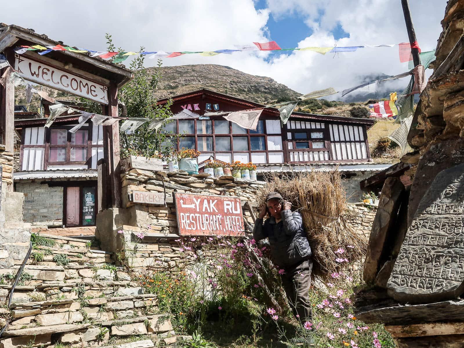 Ghyaru Nepal