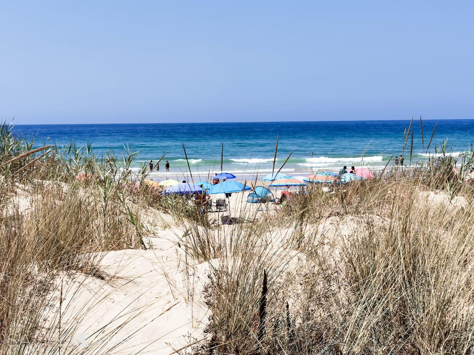 plaża w Andaluzji, Hiszpania